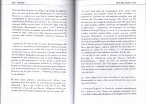 Article_sur_Vieira_da_Silva_pages_172_173